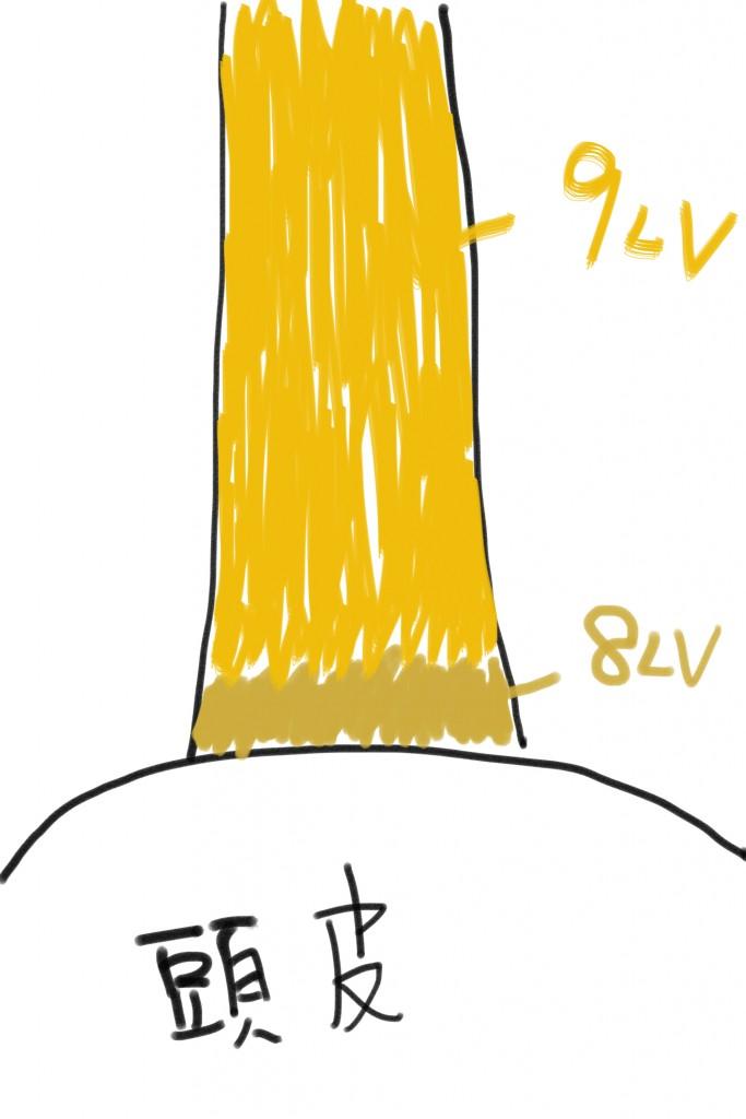 プリンカラーの絵5
